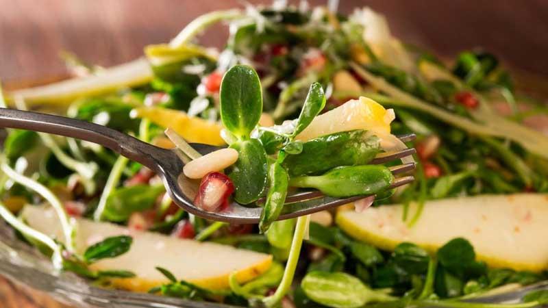 the maharaja caterers salad menu